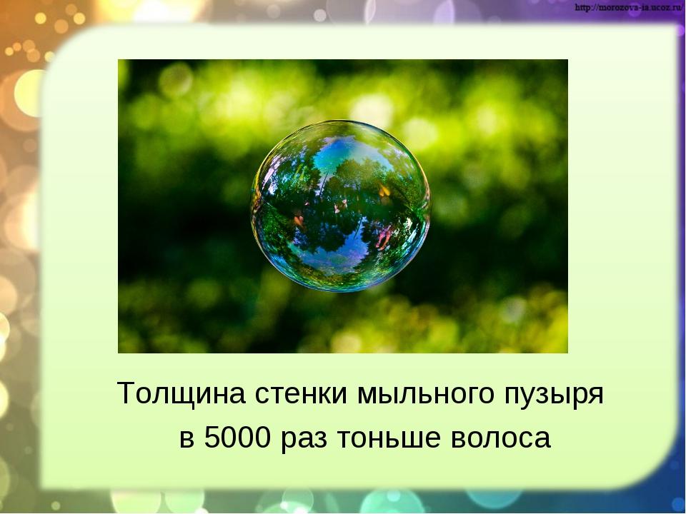 Толщина стенки мыльного пузыря в 5000 раз тоньше волоса