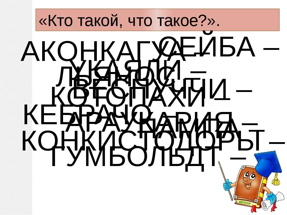 «Кто такой, что такое?». АКОНКАГУА – ВЕСПУЧЧИ – ПАМПА – СЕЙБА – ЛЬЯНОС – КЕБР...