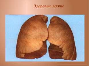Здоровые лёгкие