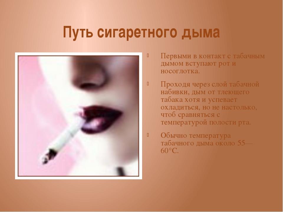 Путь сигаретного дыма Первыми в контакт с табачным дымом вступают рот и носог...