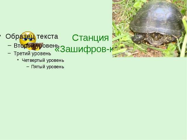 Станция «Зашифров-ка !»