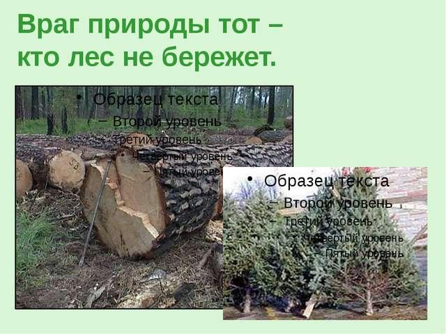 Враг природы тот – кто лес не бережет.