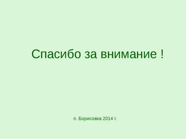 Спасибо за внимание ! п. Борисовка 2014 г.