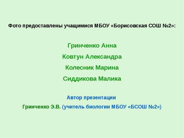 Фото предоставлены учащимися МБОУ «Борисовская СОШ №2»: Гринченко Анна Ковтун...