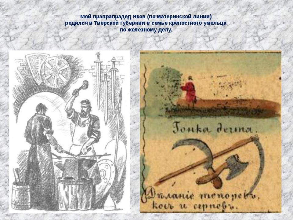 Мой прапрапрадед Яков (по материнской линии) родился в Тверской губернии в с...