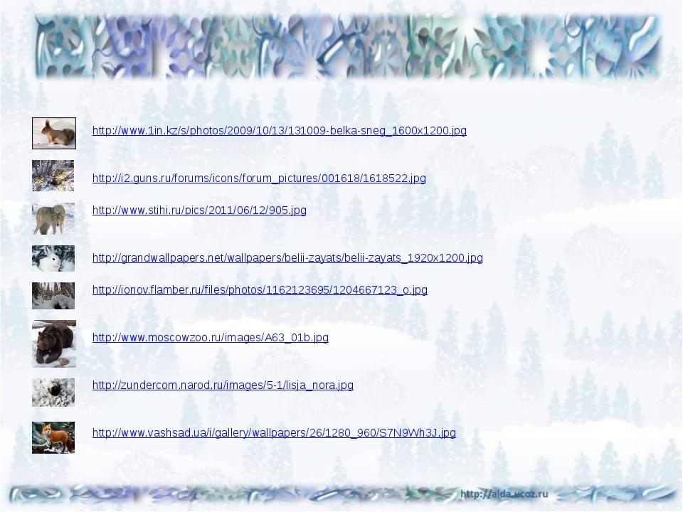 http://www.1in.kz/s/photos/2009/10/13/131009-belka-sneg_1600x1200.jpg http:/...