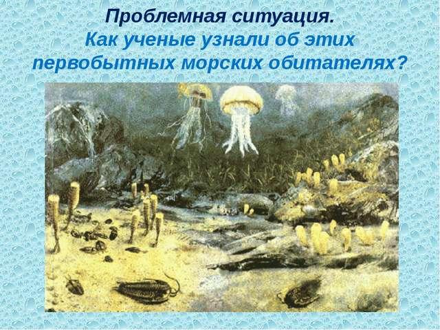 Проблемная ситуация. Как ученые узнали об этих первобытных морских обитателях?