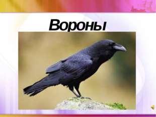 Вороны щелкните, чтобы…