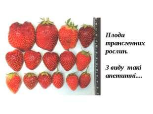 Плоди трансгенних рослин. З виду такі апетитні....
