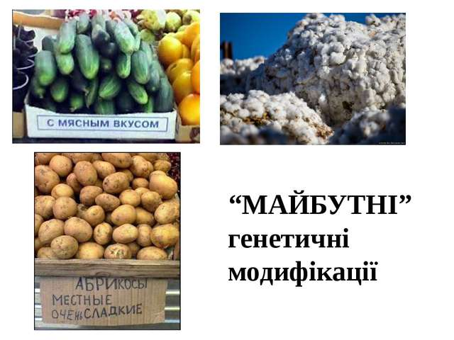 """МАЙБУТНІ"" генетичні модифікації"