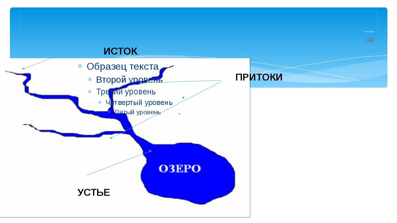 . Части реки . Как узнать, где у реки правый и левый берега? ИСТОК ПРИТОКИ У...