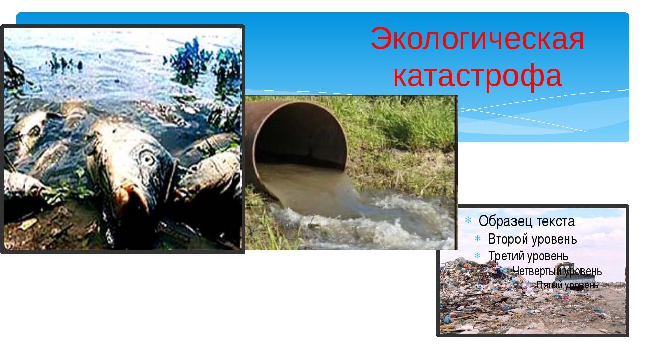 Экологическая катастрофа