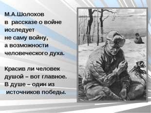 М.А.Шолохов в рассказе о войне исследует не саму войну, а возможности человеч