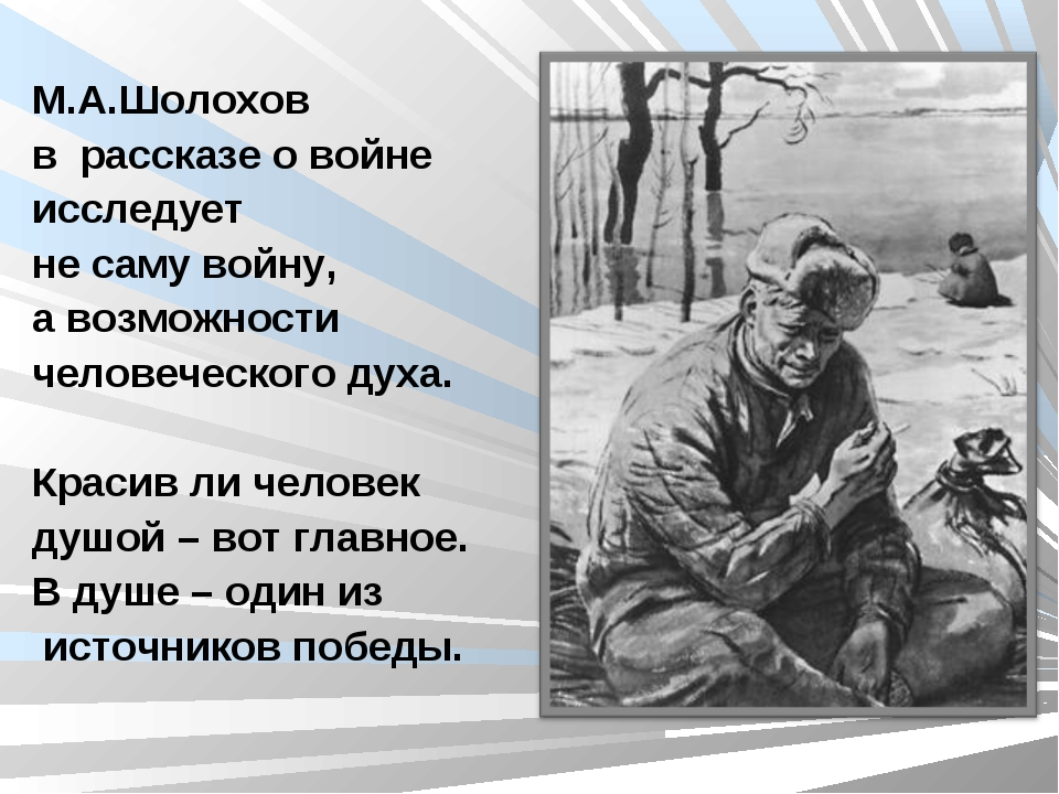 Война цитаты шолохов