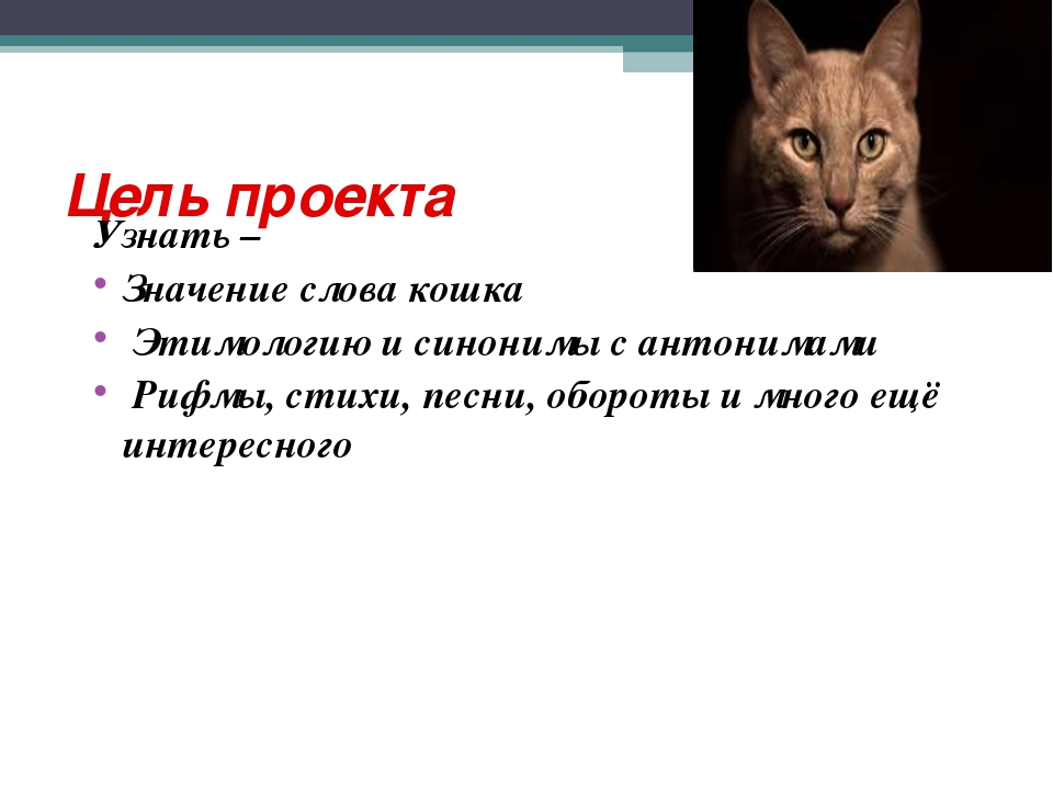 Цель проекта Узнать – Значение слова кошка Этимологию и синонимы с антонимами...