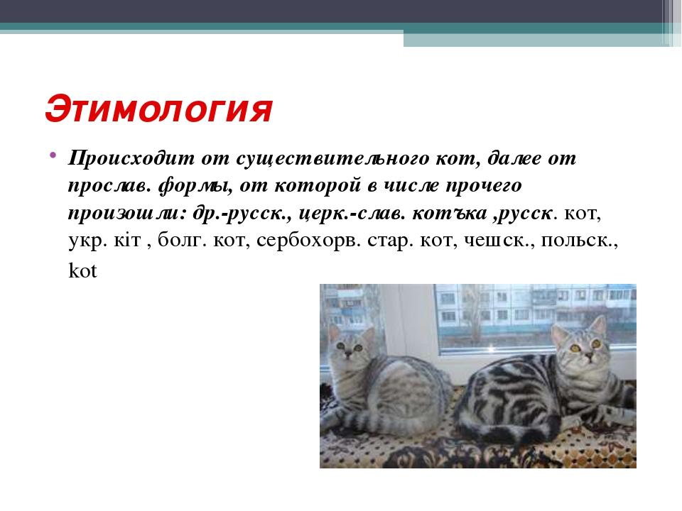Этимология Происходит от существительного кот, далее от прослав. формы, от ко...