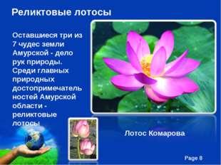 Реликтовые лотосы Оставшиеся три из 7 чудес земли Амурской - дело рук природы