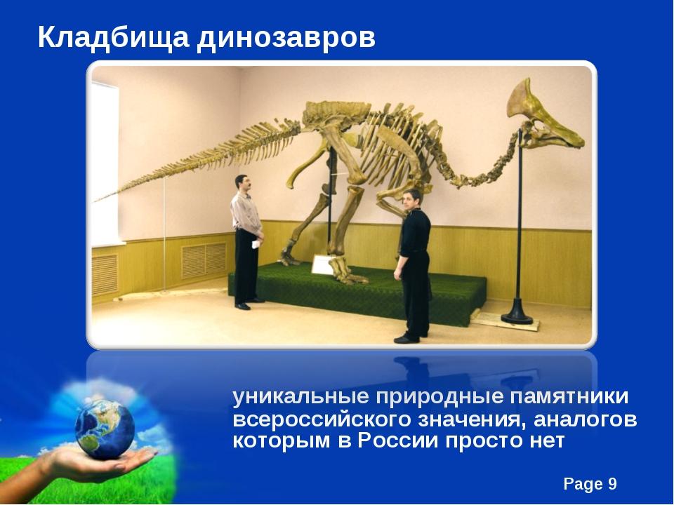 Кладбища динозавров уникальные природные памятники всероссийского значения,...