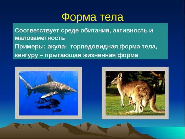 Форма тела Соответствует среде обитания, активность и малозаметность Примеры:...