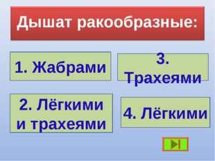 1. Жабрами 3. Трахеями 2. Лёгкими и трахеями 4. Лёгкими