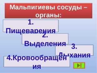 1. Пищеварения 3. Дыхания 2. Выделения 4.Кровообращения