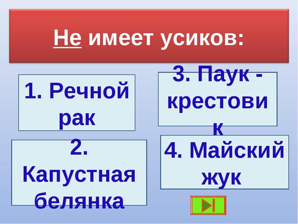 3. Паук - крестовик 1. Речной рак 2. Капустная белянка 4. Майский жук