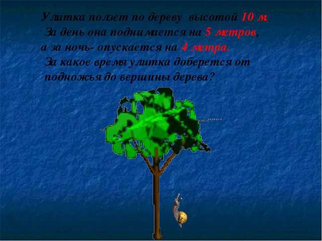 Улитка ползет по дереву высотой 10 м. За день она поднимается на 5 метров, а...