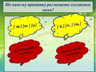 По какому принципу размещены согласные звуки?        [ ж] [ш ] [ц] Все