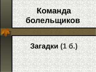 Команда болельщиков Загадки (1 б.)