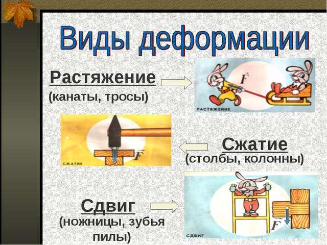 Растяжение Сжатие Сдвиг (канаты, тросы) (столбы, колонны) (ножницы, зубья п...
