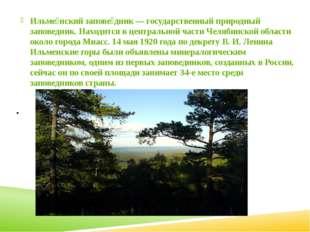 . Ильме́нский запове́дник — государственный природный заповедник. Находится в