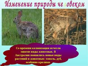 Со времени колонизации исчезли многие виды животных. В Австралии появились но