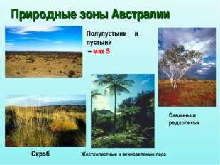 Природные зоны Австралии Скрэб Саванны и редколесья Жестколистные и вечнозеле