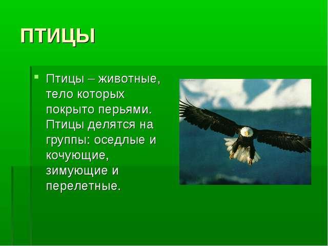 ПТИЦЫ Птицы – животные, тело которых покрыто перьями. Птицы делятся на группы...