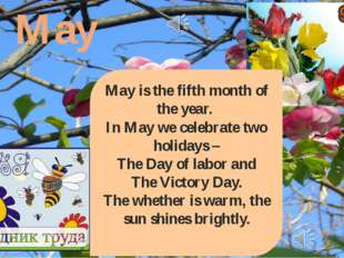 May May is the fifth month of the year. In May we celebrate two holidays – Th