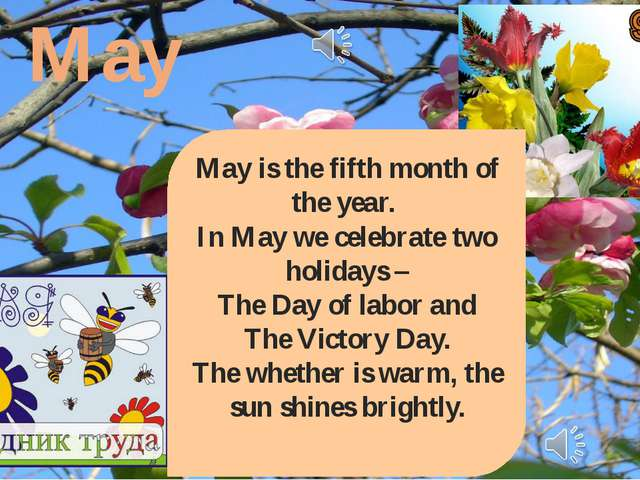 May May is the fifth month of the year. In May we celebrate two holidays – Th...