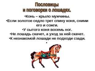 Конь – крыло мужчины. Если золотое седло трет спину коня, сними его и сожги.