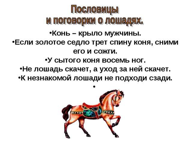 Конь – крыло мужчины. Если золотое седло трет спину коня, сними его и сожги....