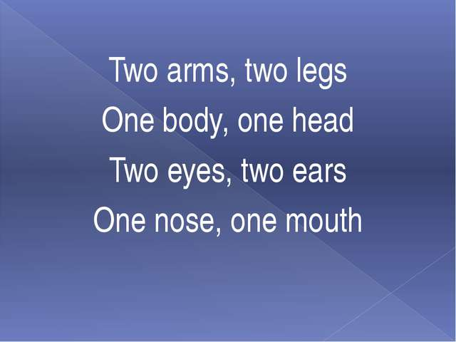 Two arms, two legs One body, one head Two eyes, two ears One nose, one mouth