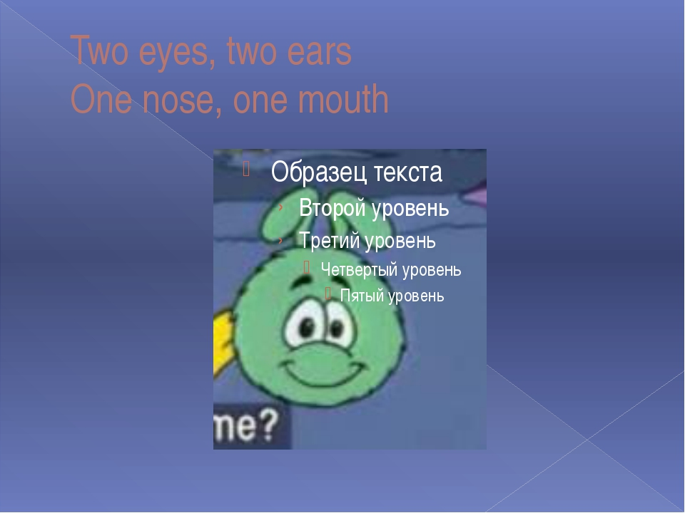 Two eyes, two ears One nose, one mouth