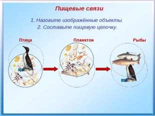 Птица Планктон Рыбы Пищевые связи 1. Назовите изображённые объекты. 2. Соста