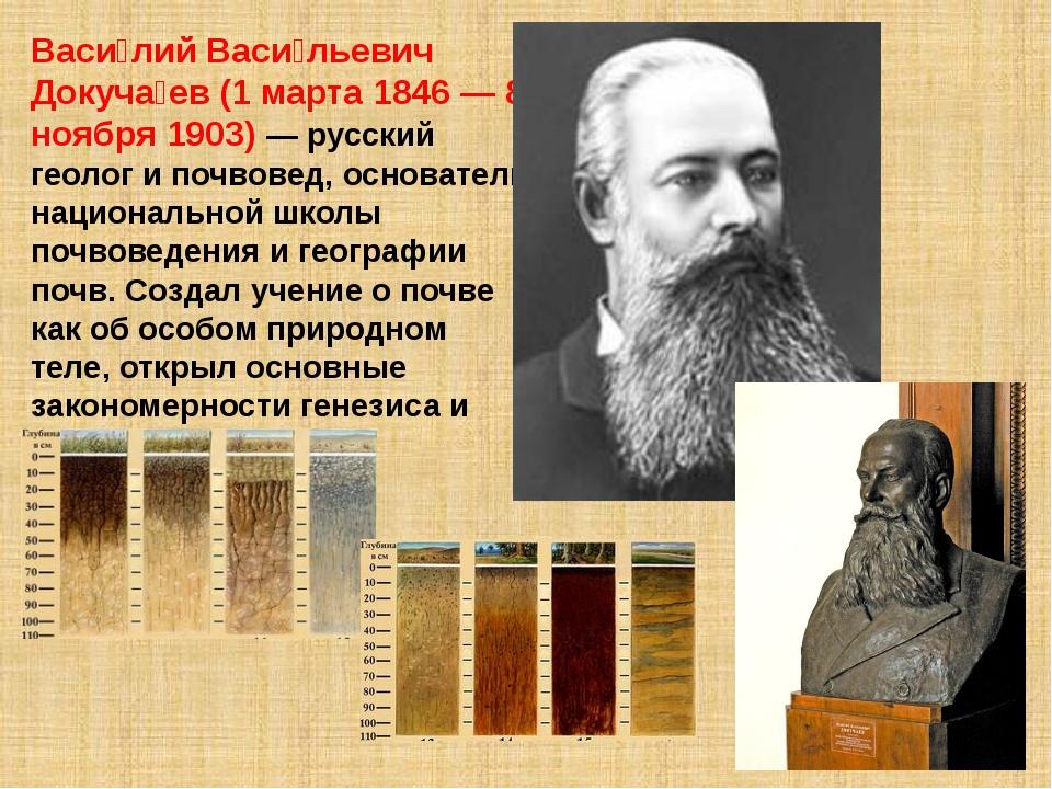 Васи́лий Васи́льевич Докуча́ев (1 марта 1846 — 8 ноября 1903) — русский геоло...
