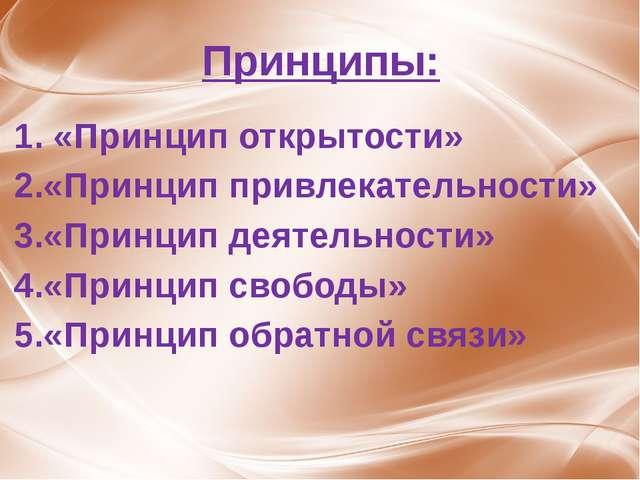 Принципы: 1. «Принцип открытости» 2.«Принцип привлекательности» 3.«Принцип де...
