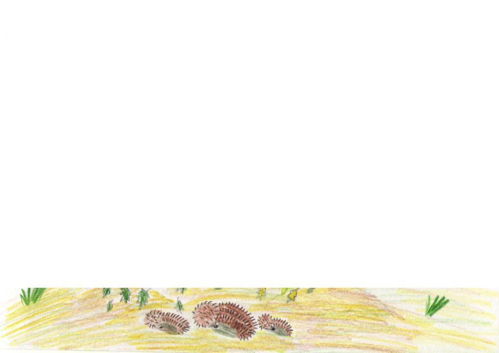 H:\детские стихи\рисунки к стихам\фото 010 005.jpg