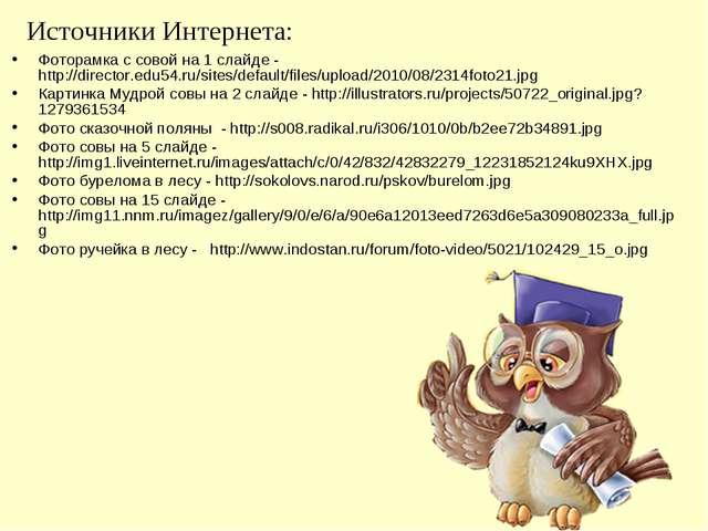 Источники Интернета: Фоторамка с совой на 1 слайде - http://director.edu54.ru...