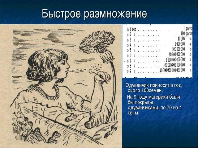 Быстрое размножение Одуванчик приносит в год около 100семян. На 9 году матери...