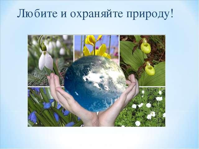 Любите и охраняйте природу!