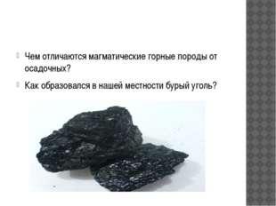 Чем отличаются магматические горные породы от осадочных? Как образовался в н