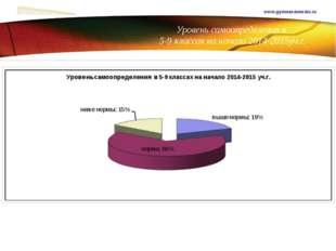 Уровень самоопределения в 5-9 классах на начало 2014-2015уч.г. www.gymnasium
