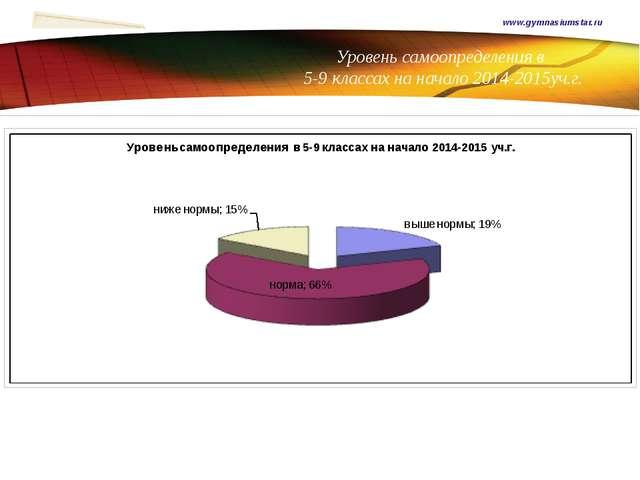 Уровень самоопределения в 5-9 классах на начало 2014-2015уч.г. www.gymnasium...